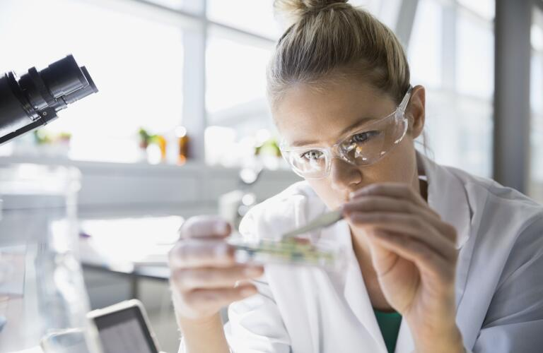 close up of female scientist examining petri dish in laboratory