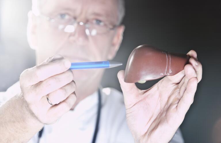 Doctor examining liver