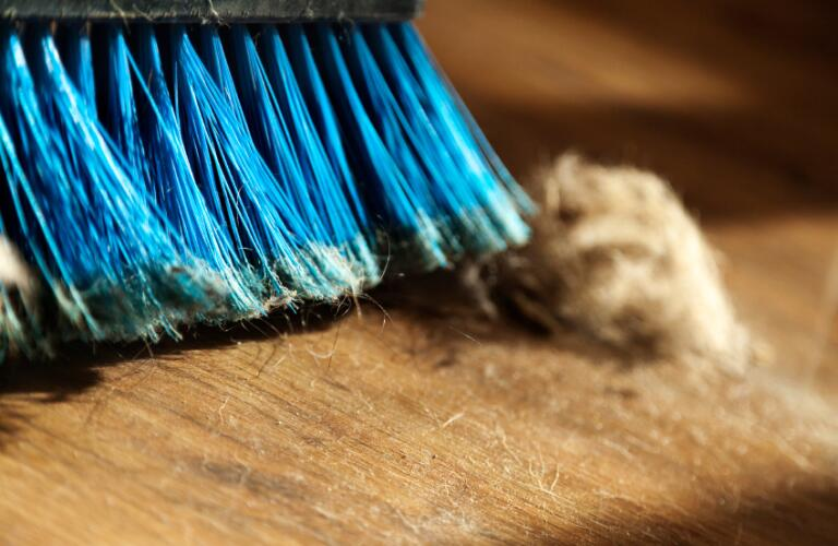 Broom dust and fur ball on parquet floor