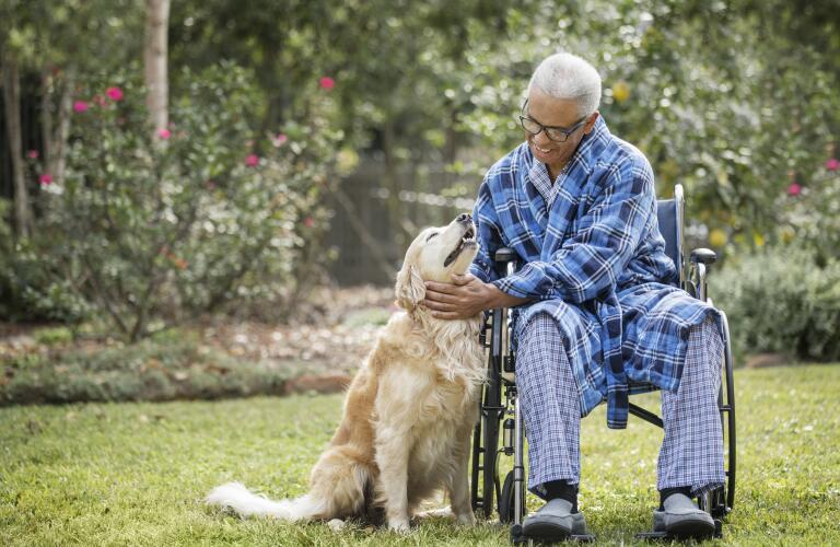Senior man in wheelchair petting dog