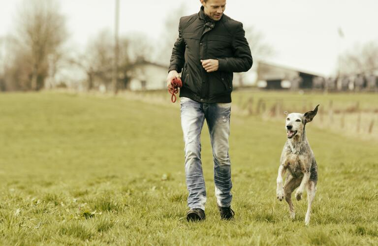 man-walking-with-dog-in-meadow