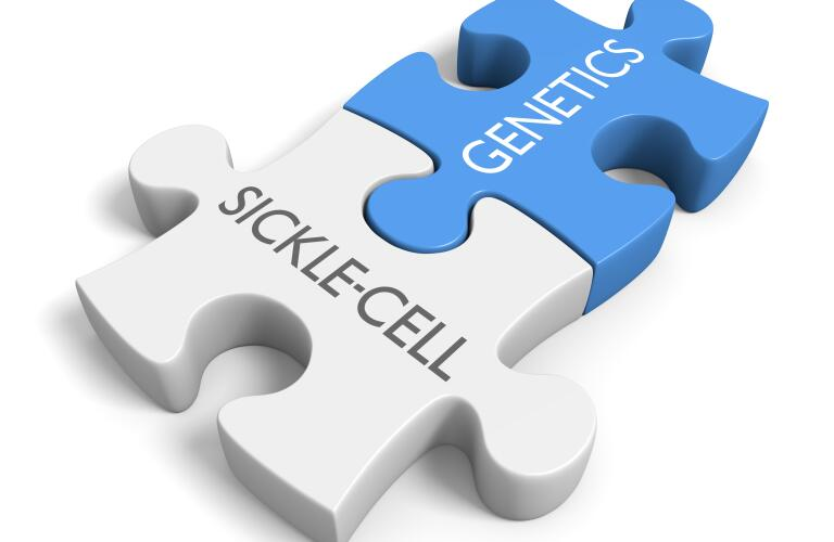 sickle cell and genetics link illustrated by puzzle pieces with the words