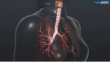 COPD Interactive Body Map Video