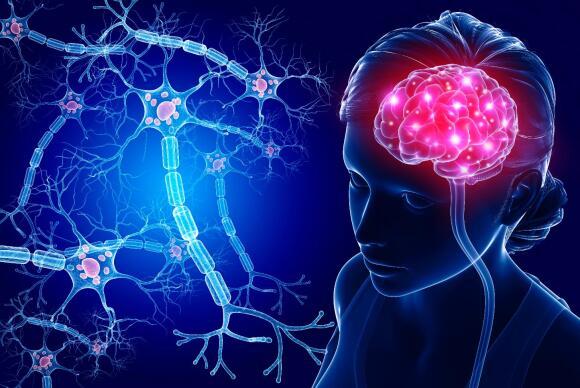 """Výsledok vyhľadávania obrázkov pre dopyt bdnf in brain sport"""""""