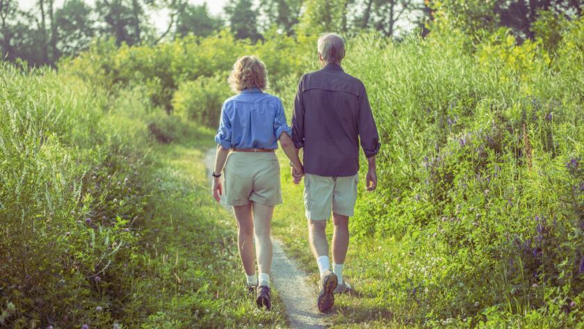elderly man and woman walking in fields