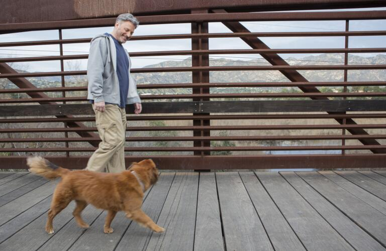 middle-aged-man-walking-dog