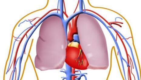 Lung Diffusion Capacity