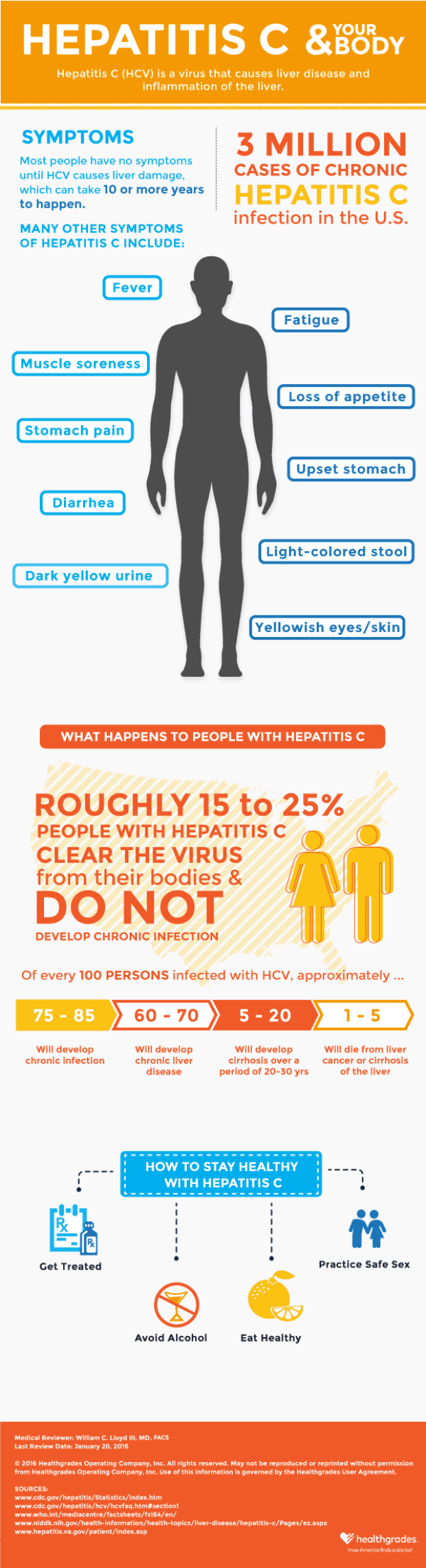 Hepatitis C and Your Body Infographic