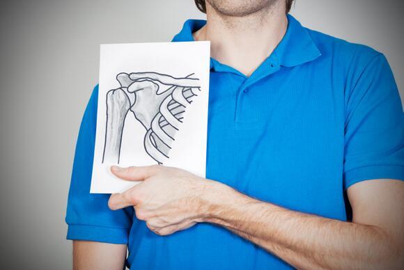 Drawing of Shoulder