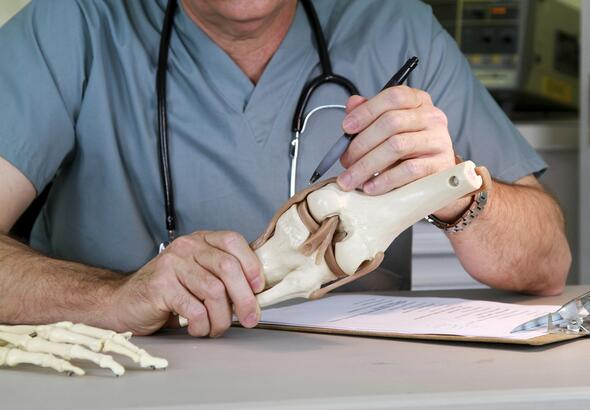 Doctor studying a skeletal model of a human knee
