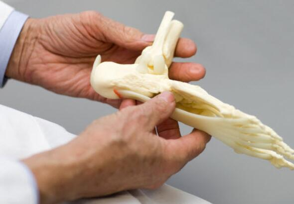 doctor holding a model of a foot skeleton